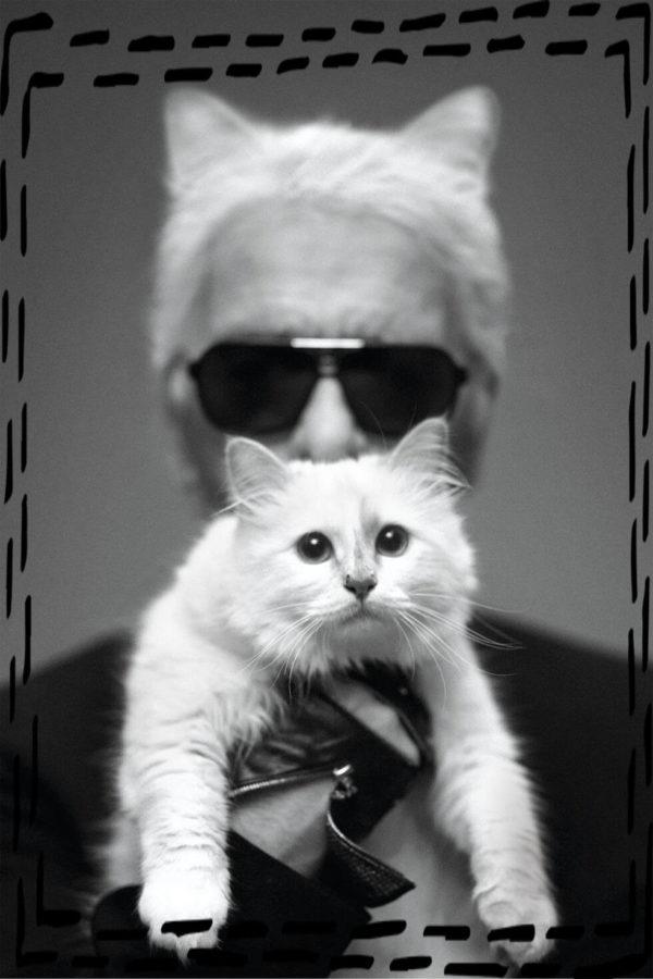uwodząc spojrzeniem okulary przeciwsłoneczne Karl