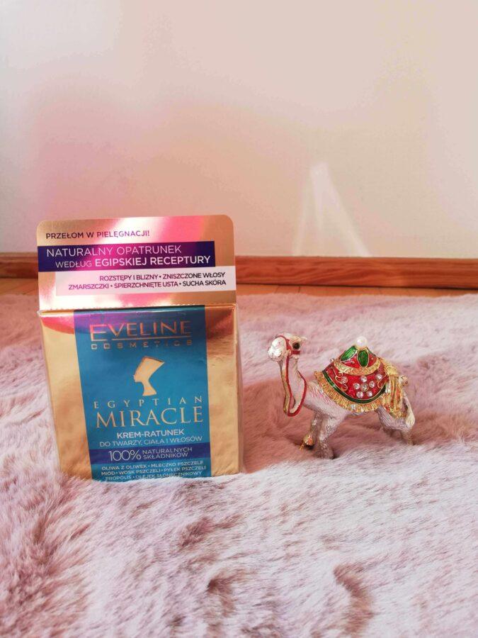 Egitpian Miracle od polskiej marki Eveline krem z wielbłądem